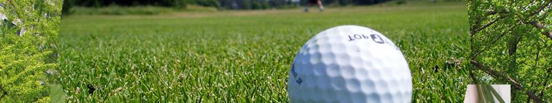 ゴルフ指導